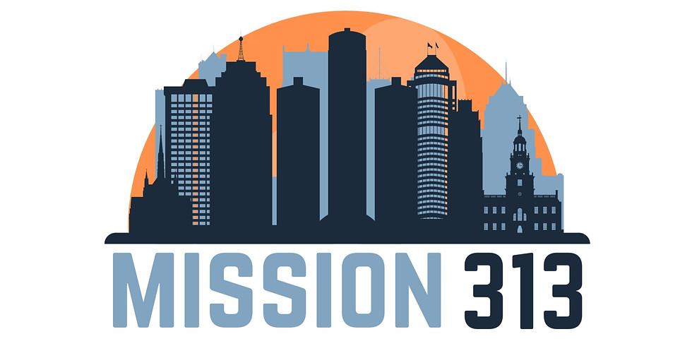 HS Mission 313