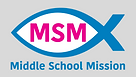 MS Mission Logo 2021 gray background.png