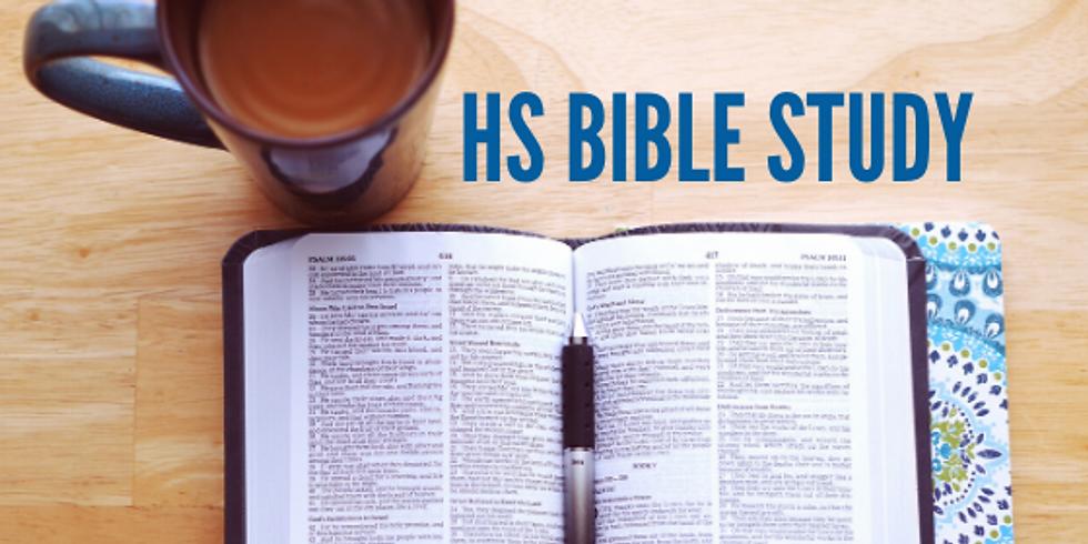 High School Summer Bible Study