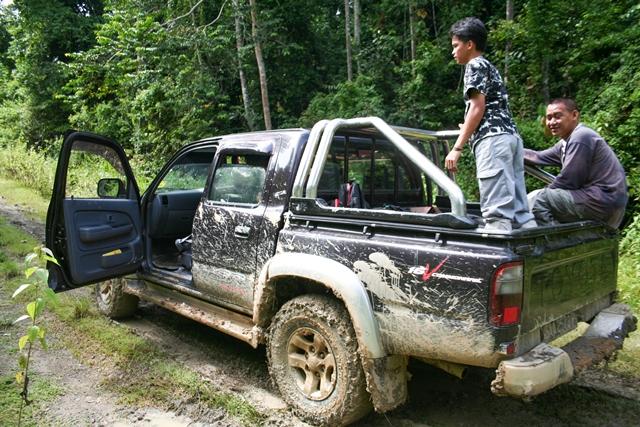 Borneo (37)
