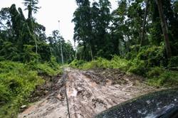 Borneo (38)
