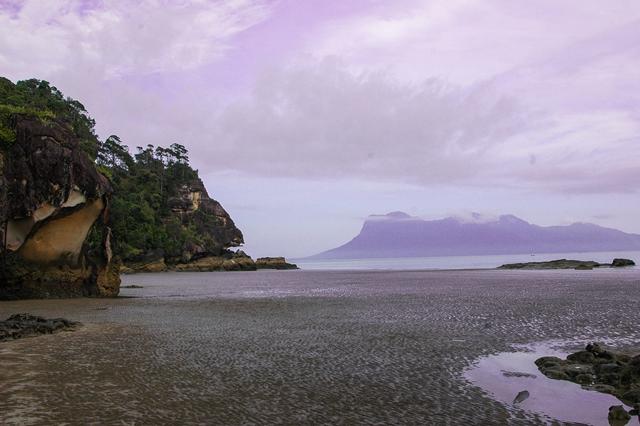 Borneo (1)