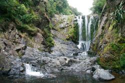 NZ (7)