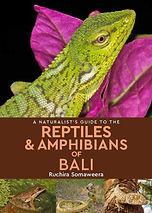 Reptiles of Bali