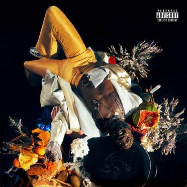 KOJEY RADICAL | CASHMERE TEARS ALBUM COVER