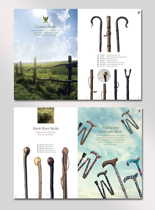 Walking Stick brochure design by Vicky Faulkner Design