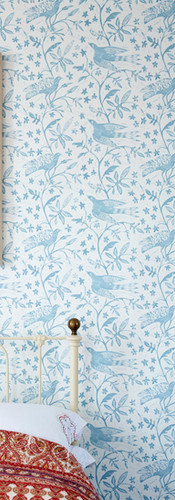 Blue Jasmine Birds