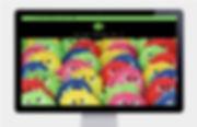Screen Bug Website Design by Vicky Faulkner Design