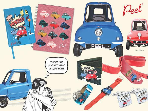 Peel car licensing Style Guide by Vicky Faulkner Design