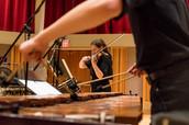 Nocturnes for Violin and Marimba