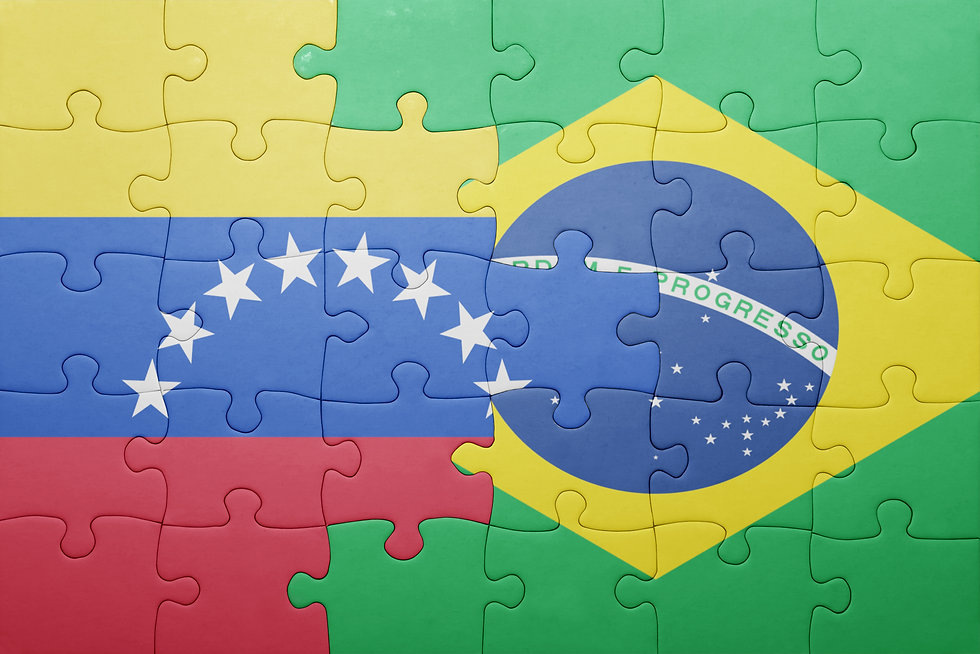 puzzle with the national flag of brazil