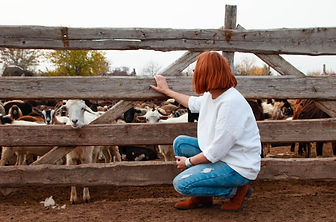 girls at fence with goats
