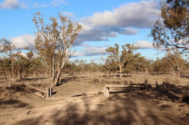 Drought Image Facebook 4 Feb 2020 .png
