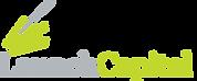 logo_launchcapital-color_336[1].png