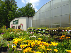 Welcome to Piedmont Feed & Garden