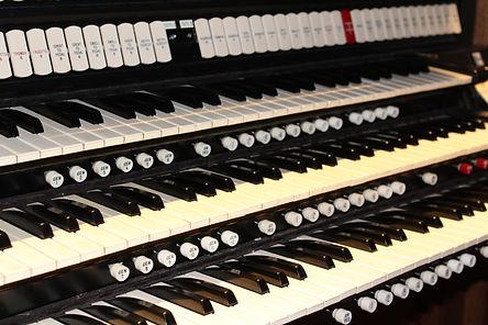 Organ .JPG