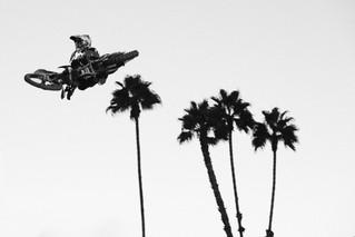 Max Vohland, California - Nicolas Paulmier