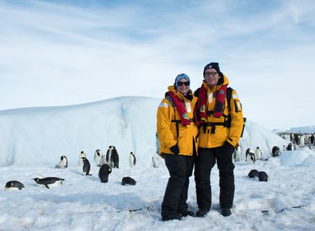 18 Penguin Species Series
