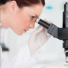 Looking in microscope.PNG