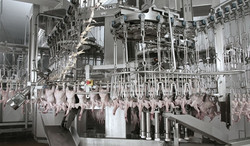 Poultry processing equipment Rehanging