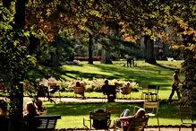 jardins du luxembourg.jpeg
