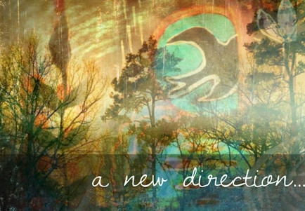 A new direction....
