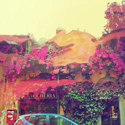 Beyond Rose Street