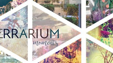 Terrarium Moments
