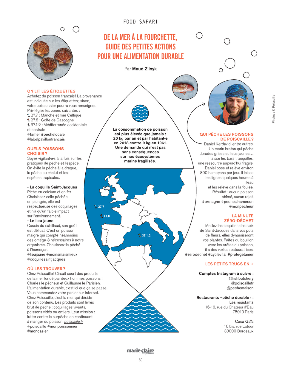 FOOD SAFARI - MCE - FISH.png