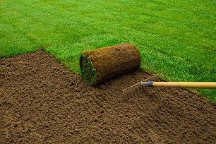 Lawn installation.jpg