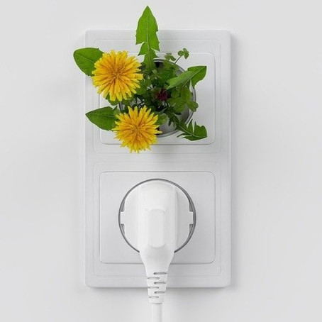 The easiest way to be green? Switch to renewable electricity!