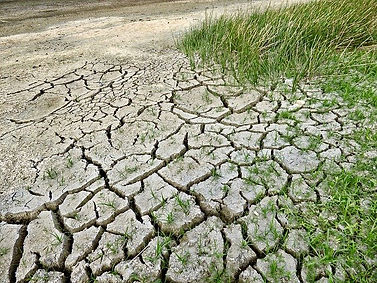 climate-change-2241061_640.jpg