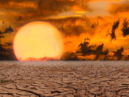 2020 was the hottest year ever