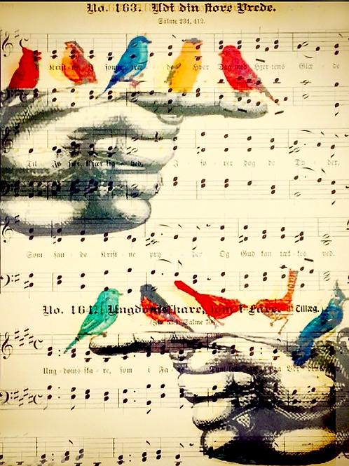 Finger Birds (Sheet Music) - AW00145
