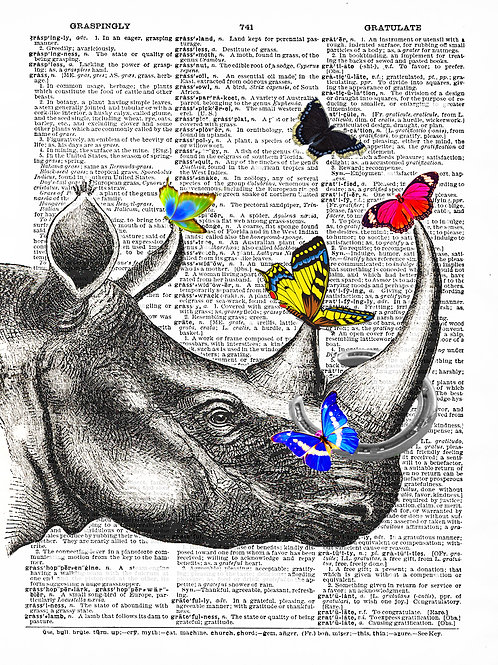 Rhino Butterfly - AW00032