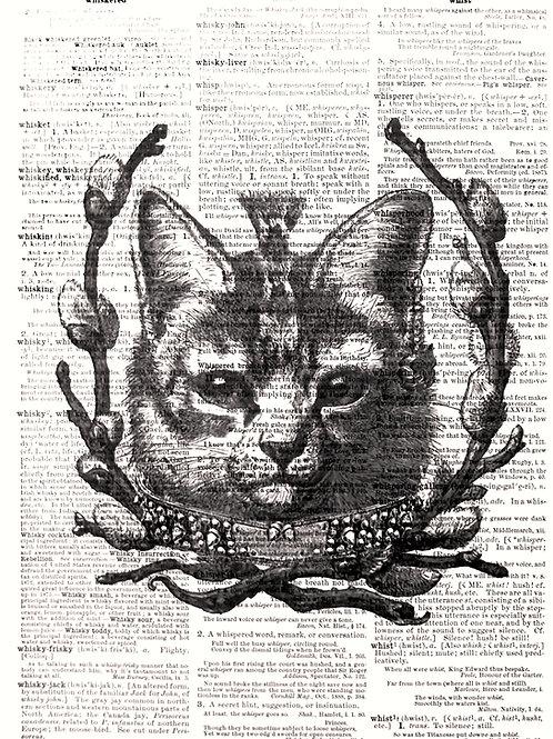 Punk Rock Cat - AW00060