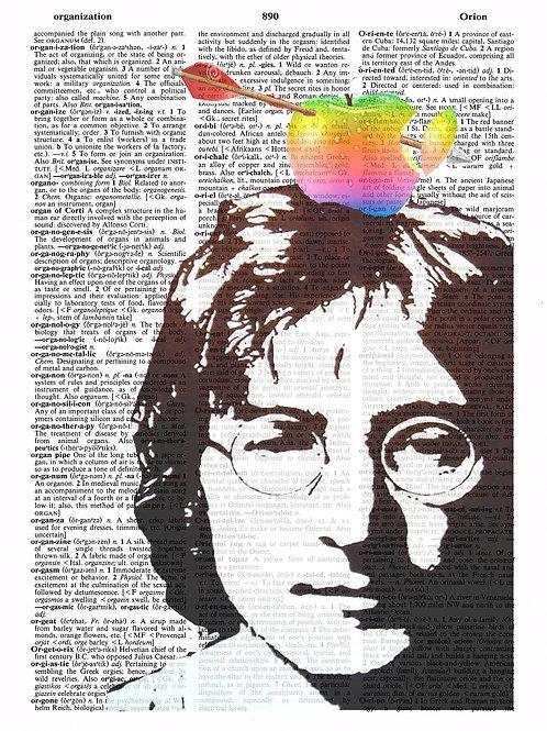 Never Gone ( Jobs/Lennon ) - AW00235