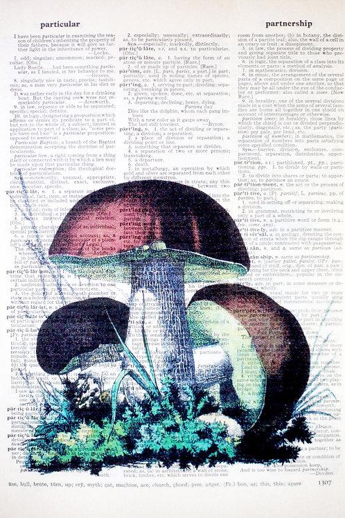 Brown Mushrooms - AW00171
