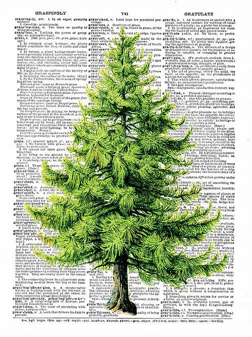 Pine Tree - AW00179