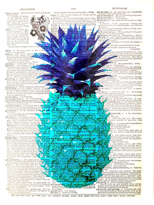 Pineapple Blue - AW00126