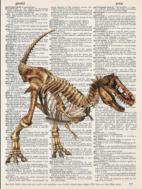 T-Rex Bones - AW00614