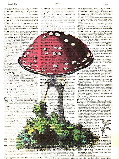 Red Mushroom - AW00183
