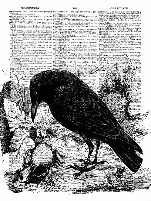 The Raven - AW00041
