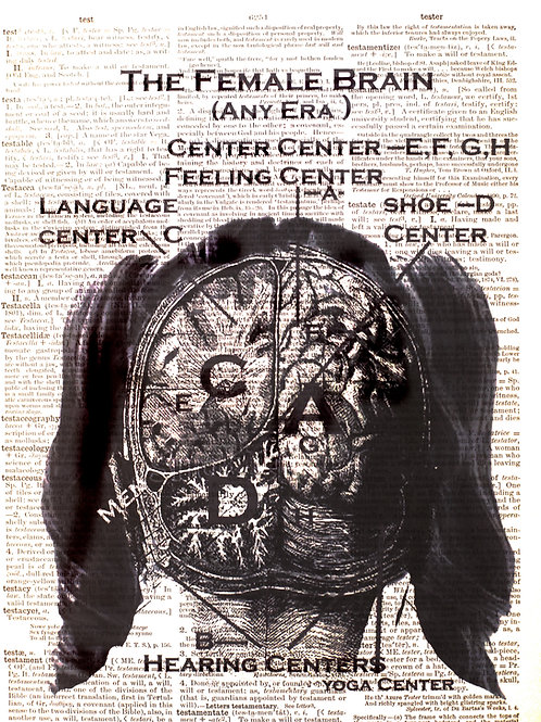 Female Brain - AW00005