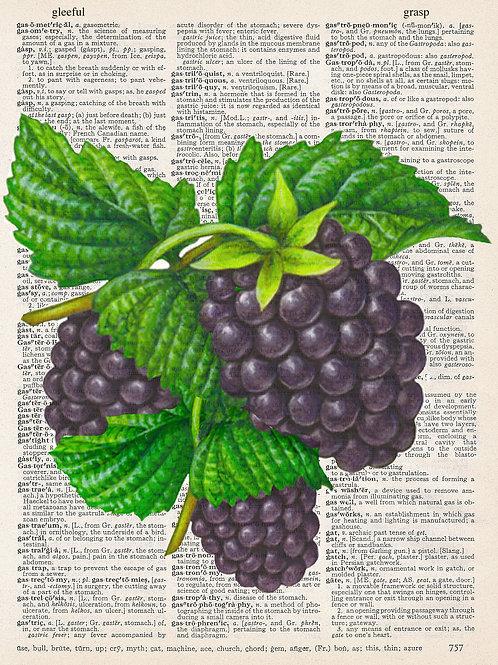 Blackberries - AW00378