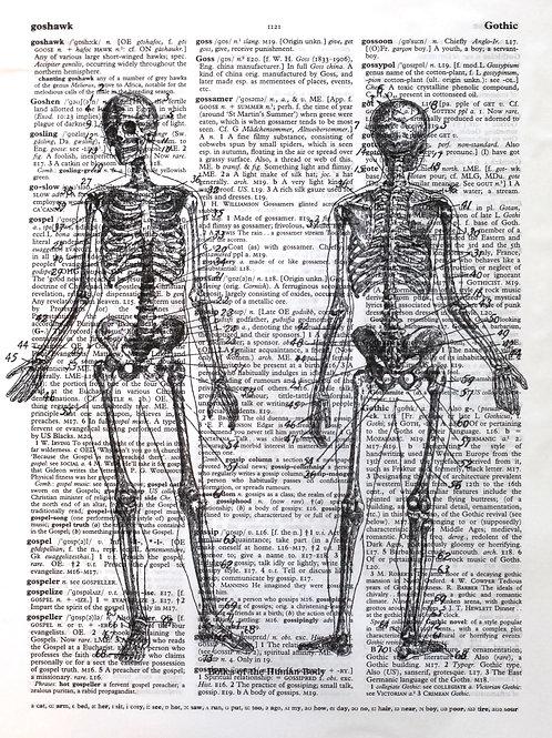 Skeletal Body - AW00014