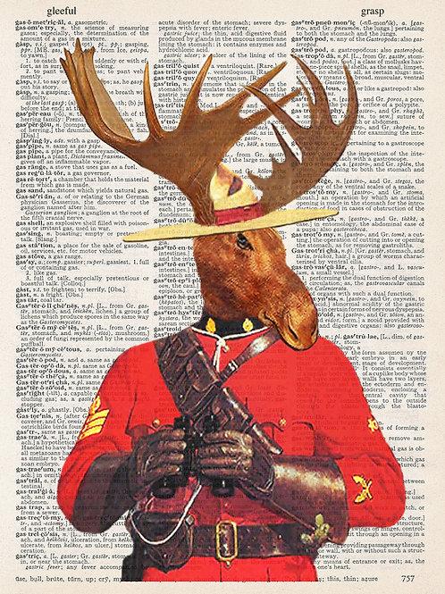 Mounty Moose - AW00030
