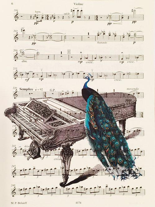 Peacock Piano (Sheet Music) - AW00158