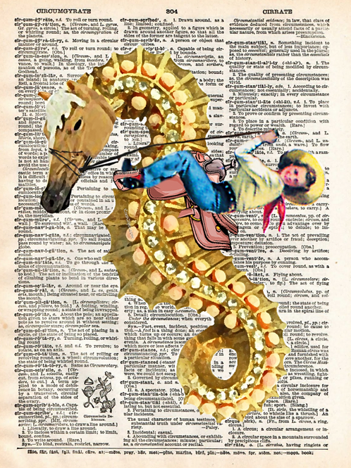 The Seahorse Rodeo - AW00499