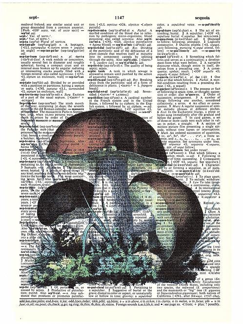 Brown Mushroom - AW00171